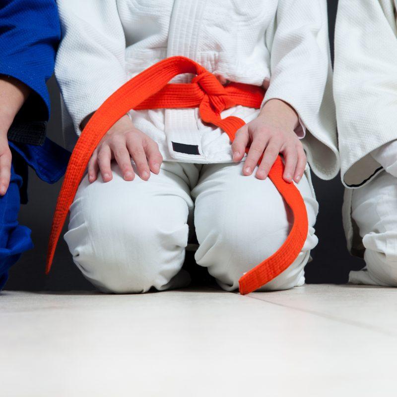 Récréa-Judo