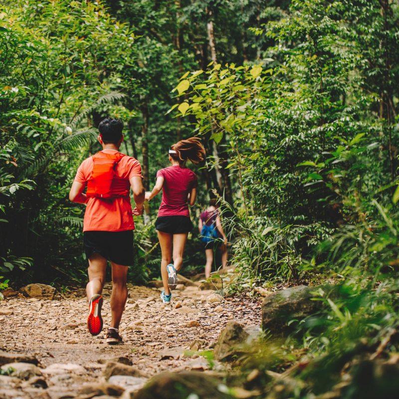 (Français) La course en trails, mais pourquoi?